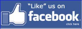 like us FB3